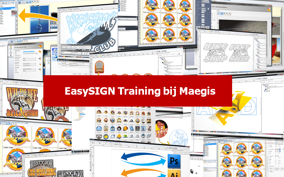 EasySIGN Training
